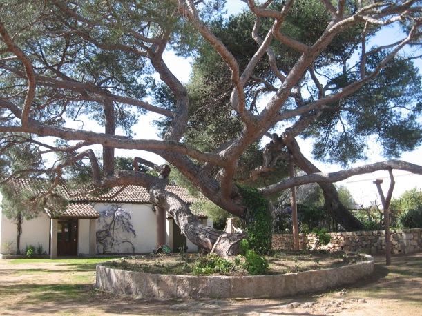 Museo_Garibaldino_di_Caprera_2.jpg